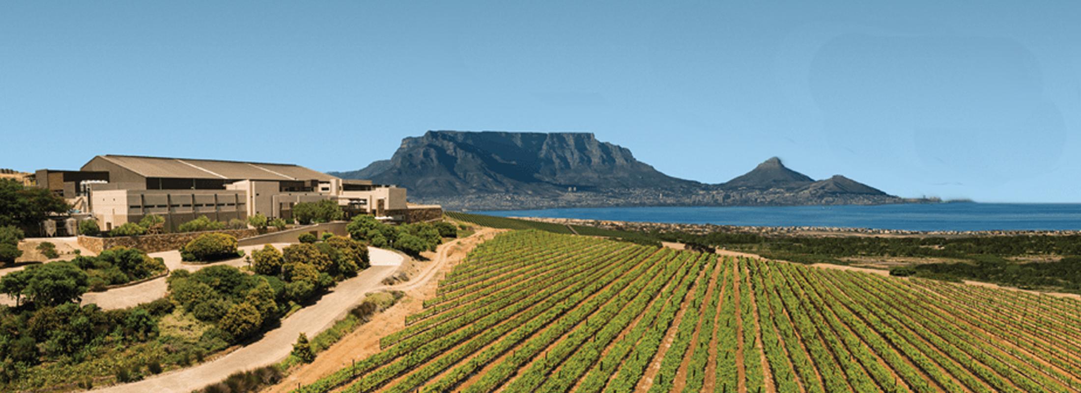 Circuit Le Cap Cape Town