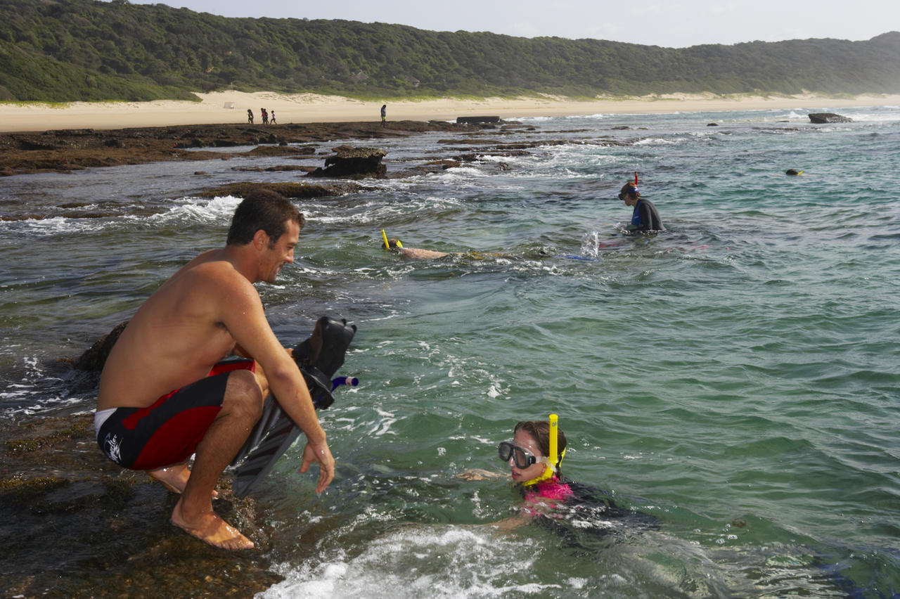 snorkeling_on_the_elephant_coast.jpg