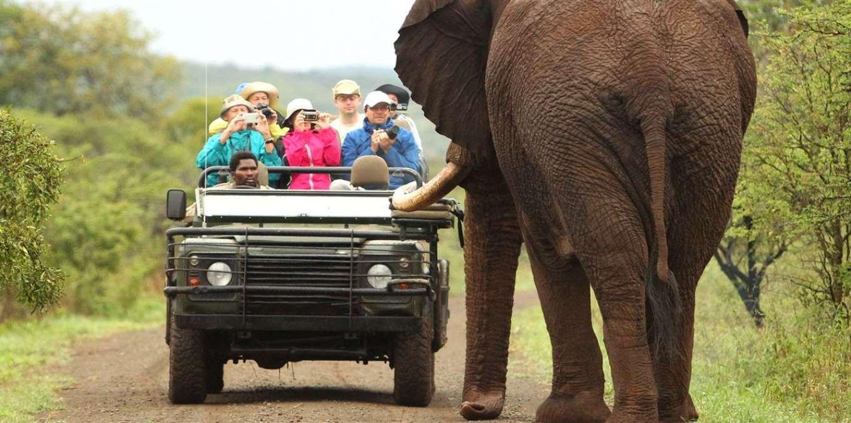 safari-experience-47-v1.jpg.1360x678_default.jpg