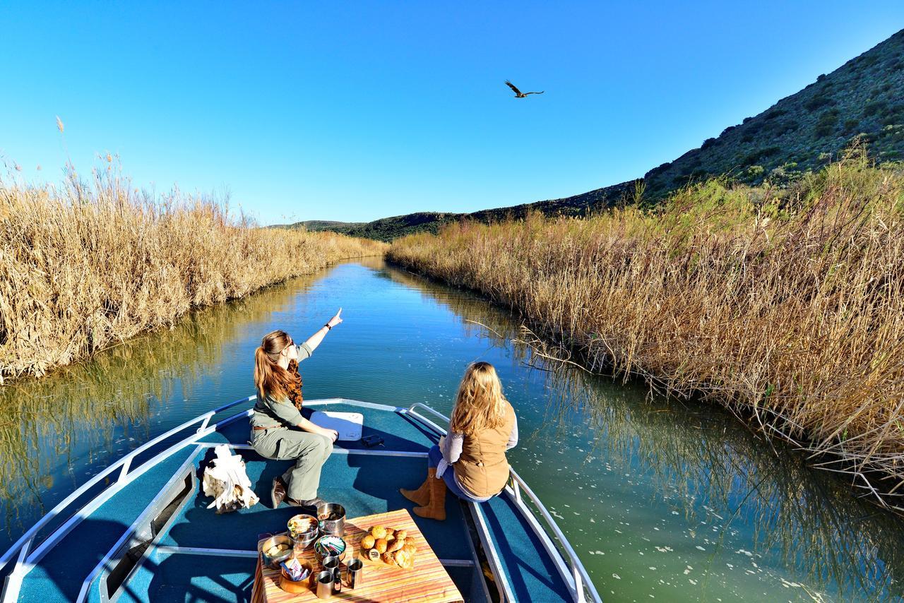 sanbona_peregrine_boat_experience_5.jpg