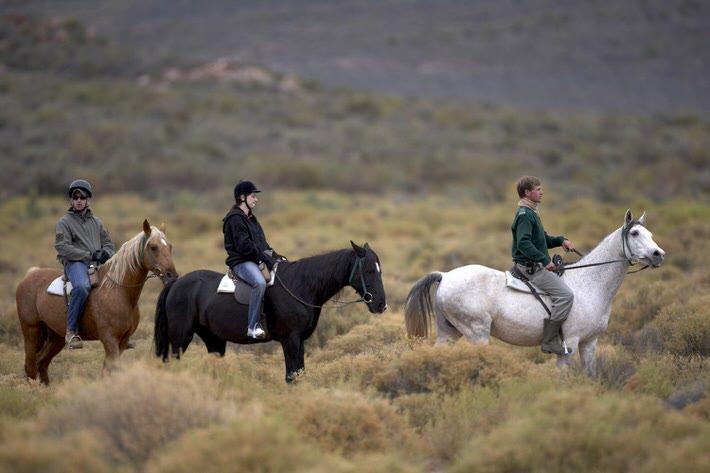 horseback-safari002.jpg