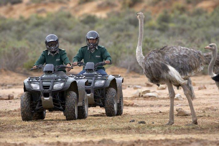 quad-bike-safari001.jpg