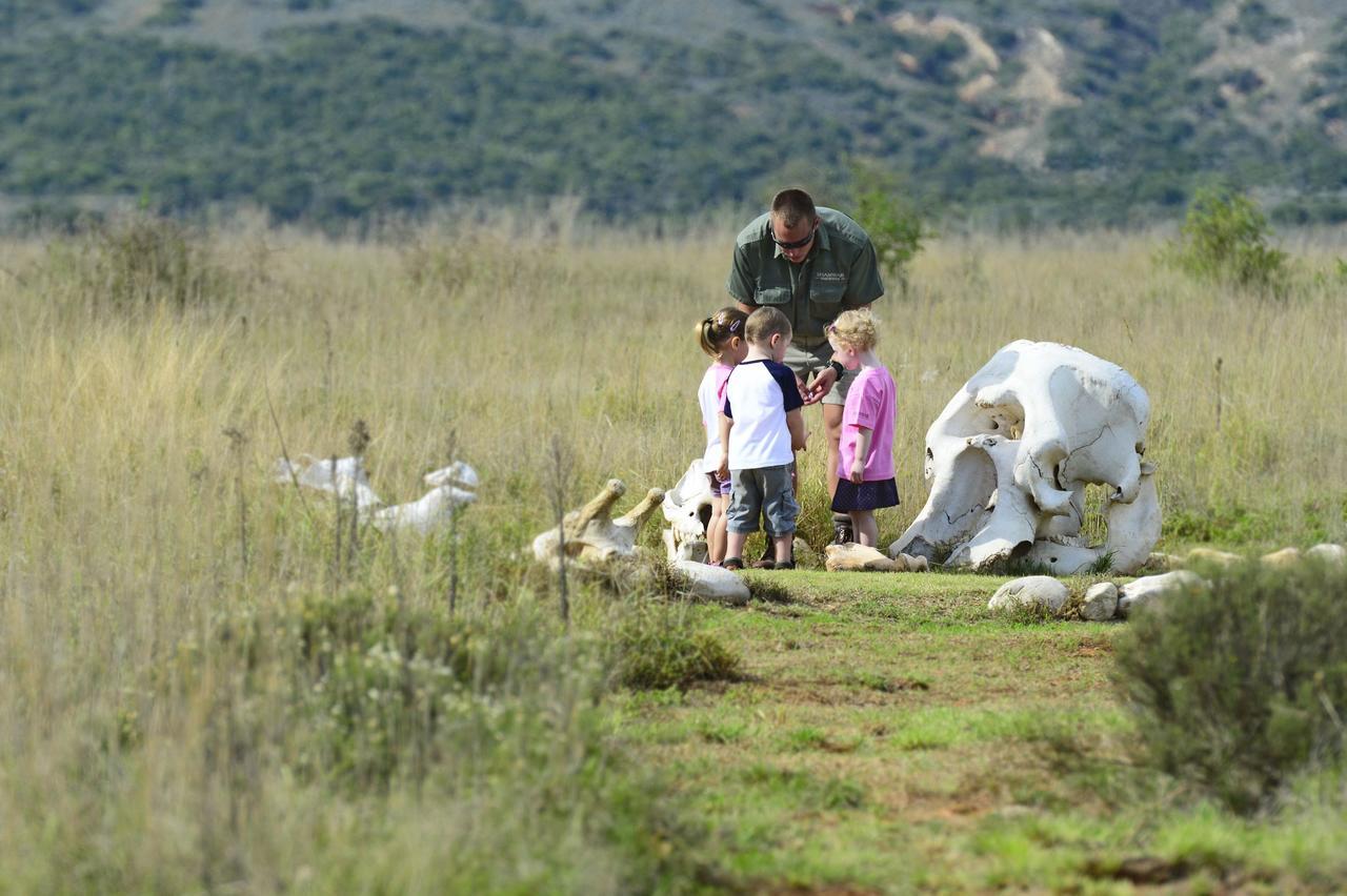 kids_on_safari_april_2014_6.jpg
