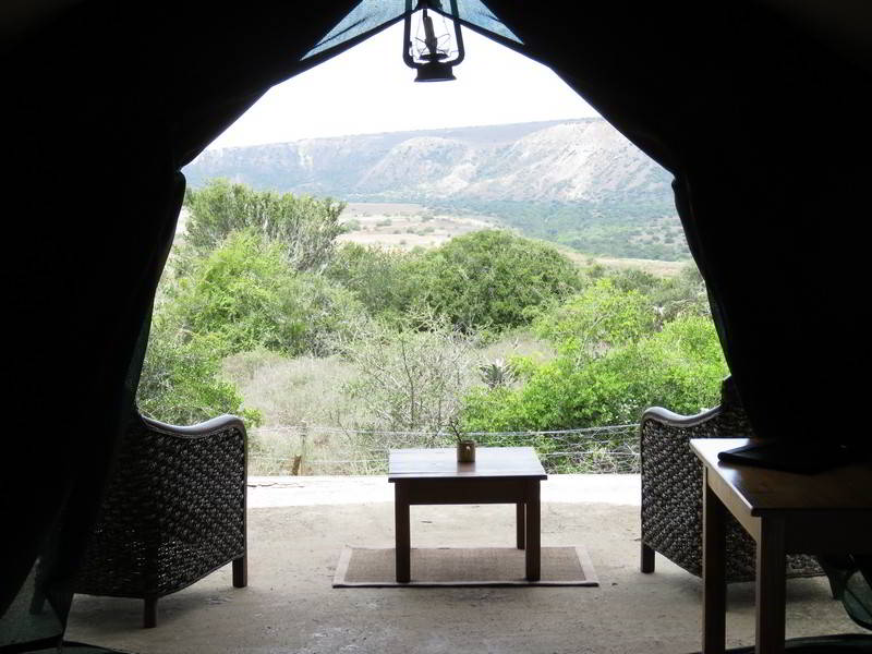 Woodbury-Tented-Camp-Amakhala-Game-Reserve-View-From-Tent.jpg