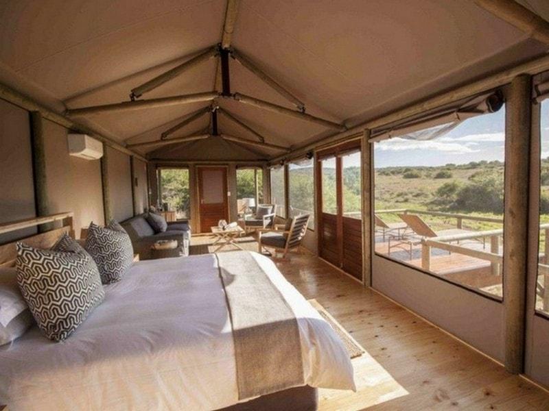 Hlosi_Luxury_Safari_Tent_Full-min.jpg