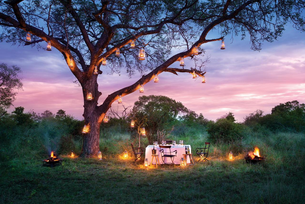 Safari romantique -