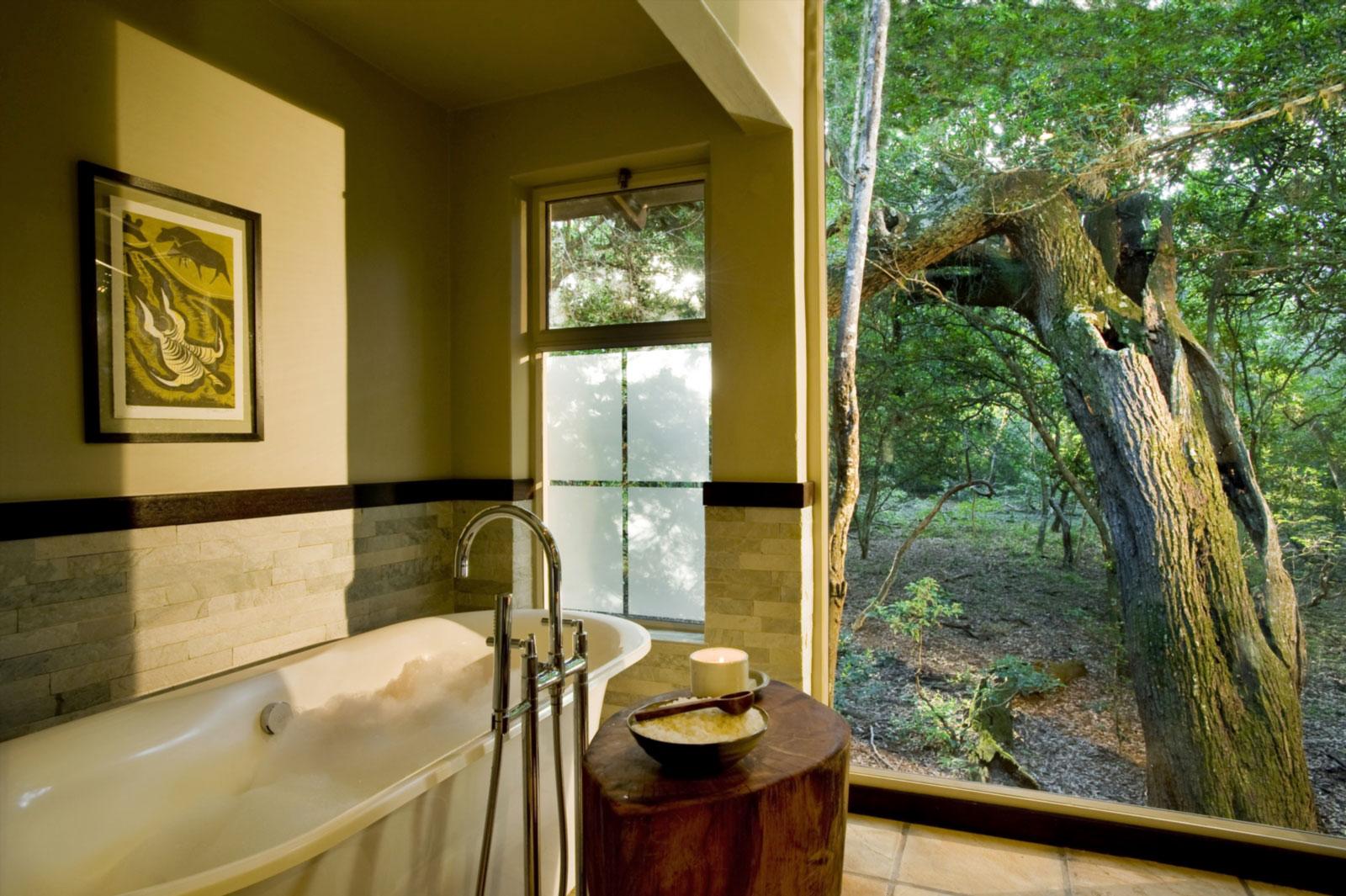 phinda-forest-lodge-bathroo.jpg
