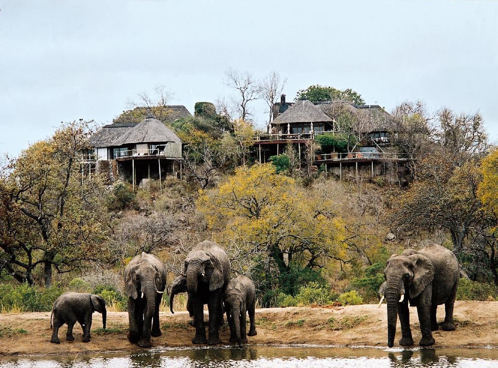 agence_de_voyage_et_safaris_en_afrique_capoupascap_cap_ou_pas_cap_afrique_du_sud_le_parc_national_kruger17.jpgleperdhills.jpg