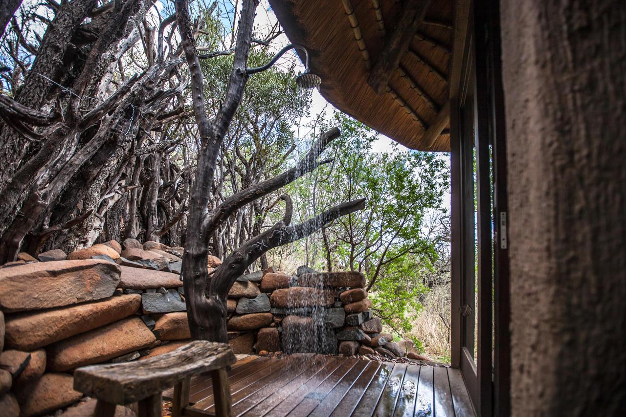 Agence_de_voyage_afrique_base en afrique du sud_capoupascap_voyage_cap_ou_pas_cap_safari africaine_Nambiti_Private_Game_lodge09.jpg