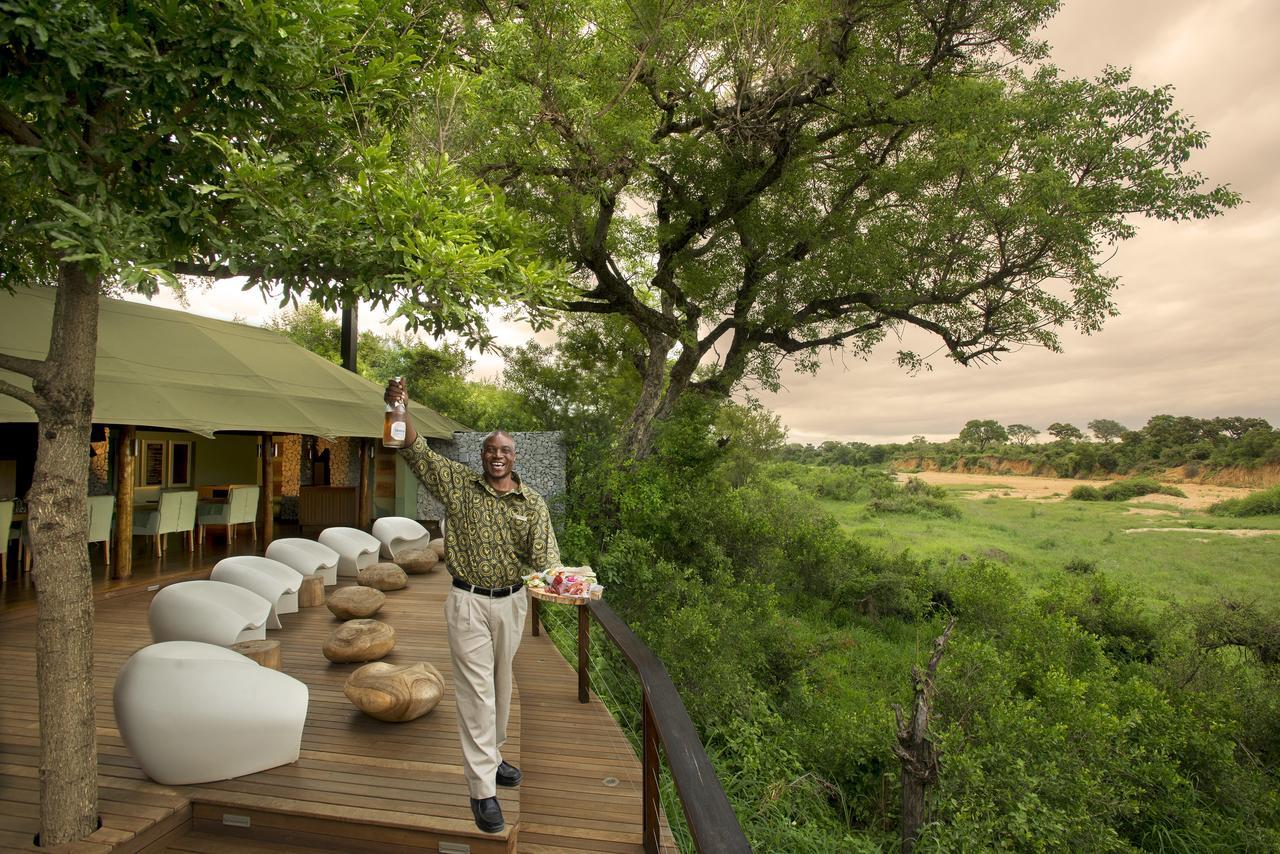 agence_de_voyage_vacance_afrique_safari_le_parc_national_kruger_afrique_du_sud_capoupascap_cap_ou_pas_cap_voyage_safari_tente_de_lux_ngala_tented_camp06.jpg