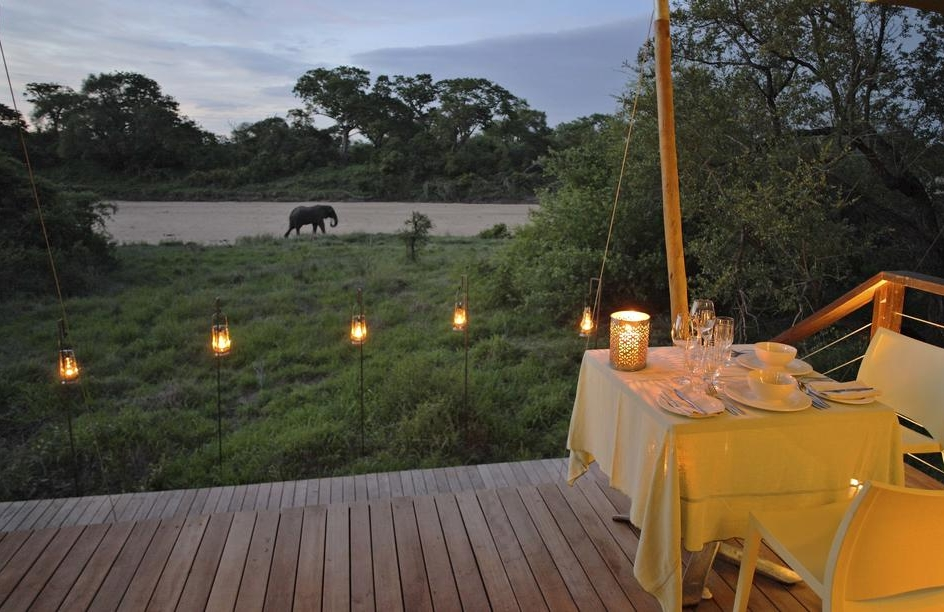 agence_de_voyage_vacance_afrique_safari_le_parc_national_kruger_afrique_du_sud_capoupascap_cap_ou_pas_cap_voyage_safari_tente_de_lux_ngala_tented_camp11.jpg