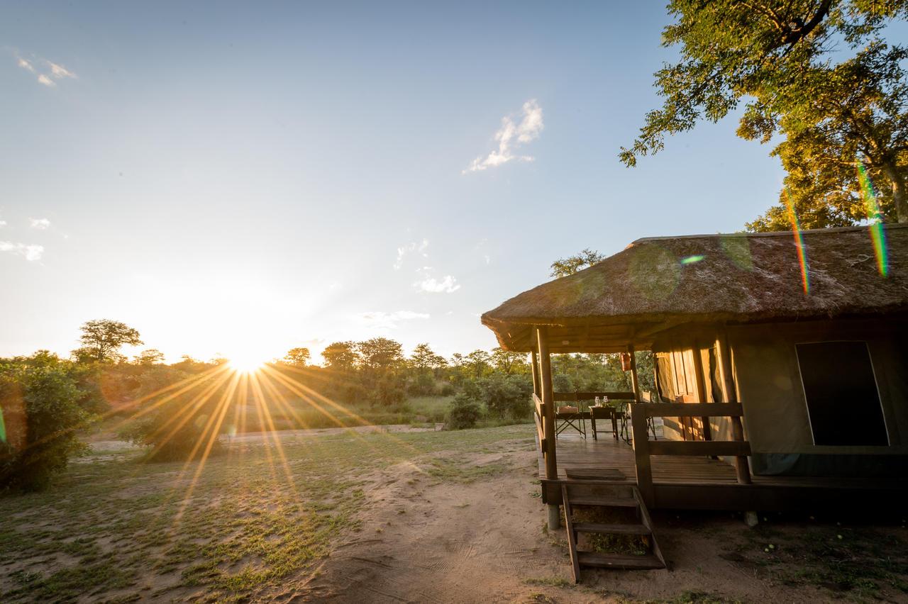 agence_de_voyage_vacance_afrique_safari_le_parc_national_kruger_afrique_du_sud_capoupascap_cap_ou_pas_cap_voyage_safari_tente_de_lux_Sanbona_Bayethe_Lodge_04.jpg