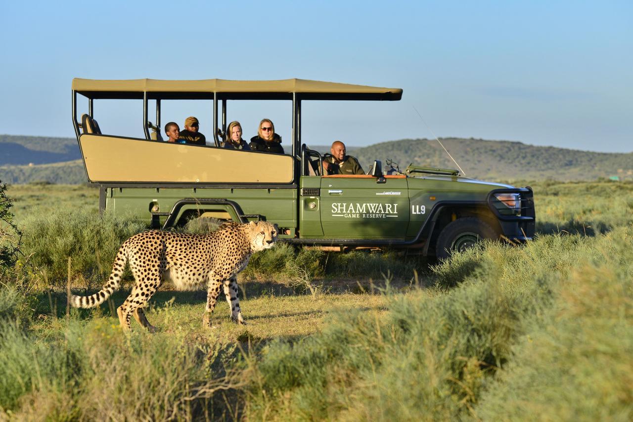 Agence_de_voyage_safari_enfants_afrique_du_sud_capoupascap_voyage_riverdene_lodge_shamwari08.jpg