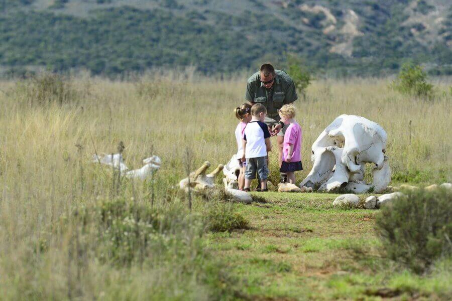 Agence_de_voyage_safari_enfants_afrique_du_sud_capoupascap_voyage04.jpg