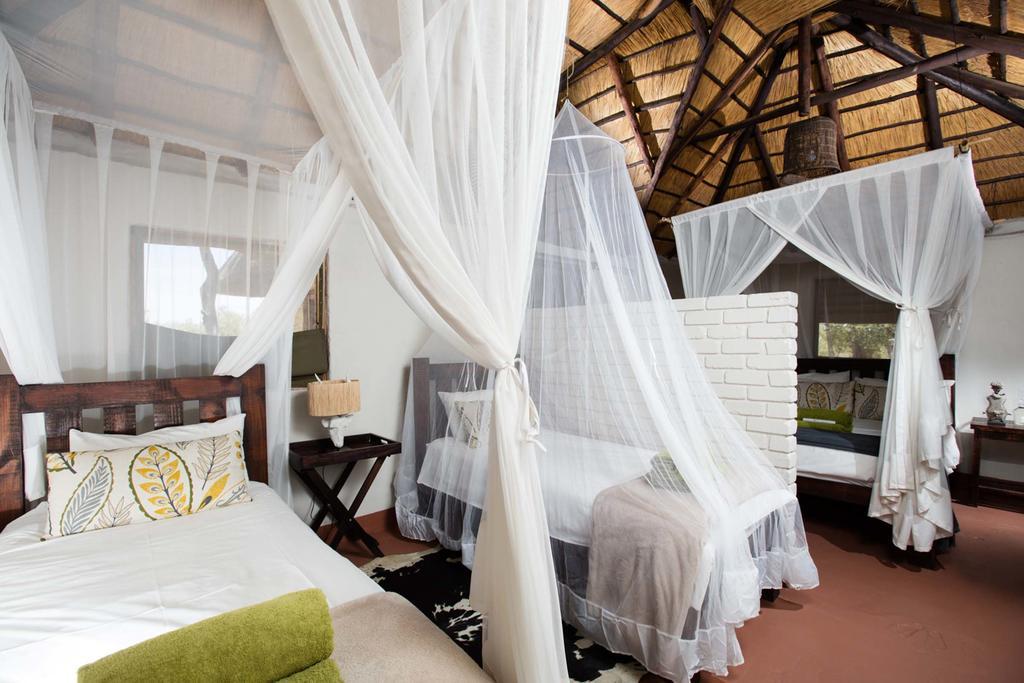 agence_de_voyage_et_safaris_en_afrique_capoupascap_cap_ou_pas_cap_afrique_du_sud_le_parc_national_kruger_africa_on_foot0.jpg