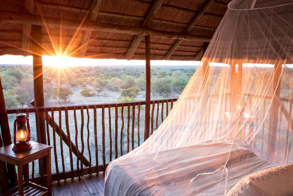 agence_de_voyage_et_safaris_en_afrique_capoupascap_cap_ou_pas_cap_afrique_du_sud_le_parc_national_kruger_africa_on_foot06.jpg