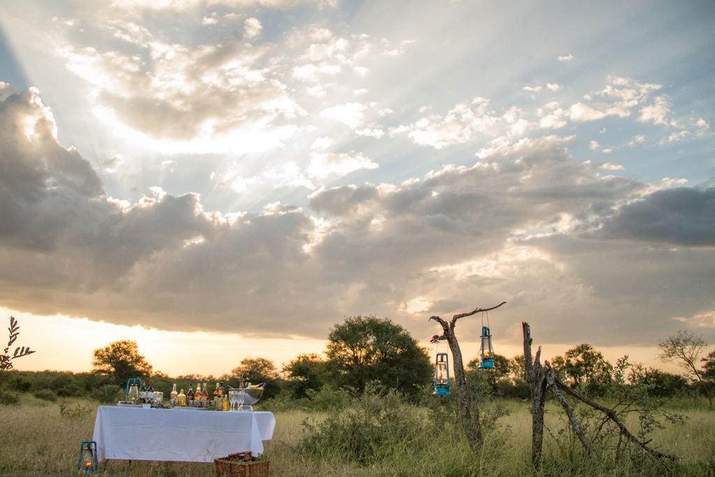 agence_de_voyage_et_safaris_en_afrique_capoupascap_cap_ou_pas_cap_afrique_du_sud_le_parc_national_kruger_africa_on_foot16.jpg