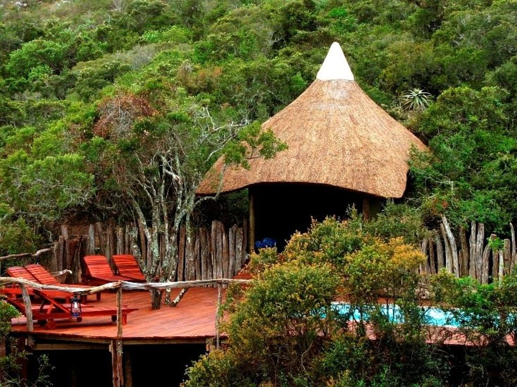 agence_de_voyage_vacance_afrique_safari_le_parc_national_kruger_afrique_du_sud_capoupascap_cap_ou_pas_cap_voyage_safari_tente_de_lux_la_route_des_jardins_lalibela_game_reserve03.jpg