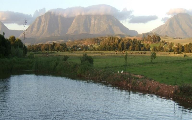 Agence_de_voyages_basée_en_Afrique_Tours_et_voyage_à_Cape_Town_et_les_vignobles_Voyage_de_noces avec_CapOuPasCap_Voyage_la_route_des_jardins_riversdale3.jpg