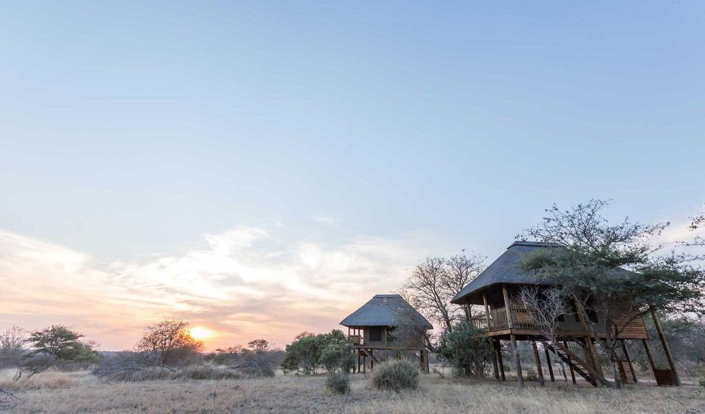 Travel_agency_based_in_South_Africa_Safaris_Sejour Activités_Kruger park_Panoramic route_la_kruger_national_parc_nThambo_tree_camp8.jpg