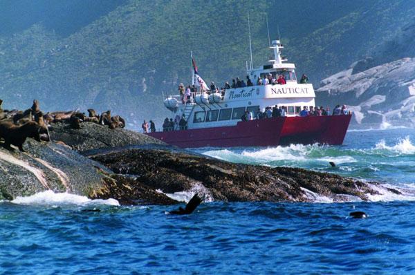 nauticat-seal-island-trip.jpg