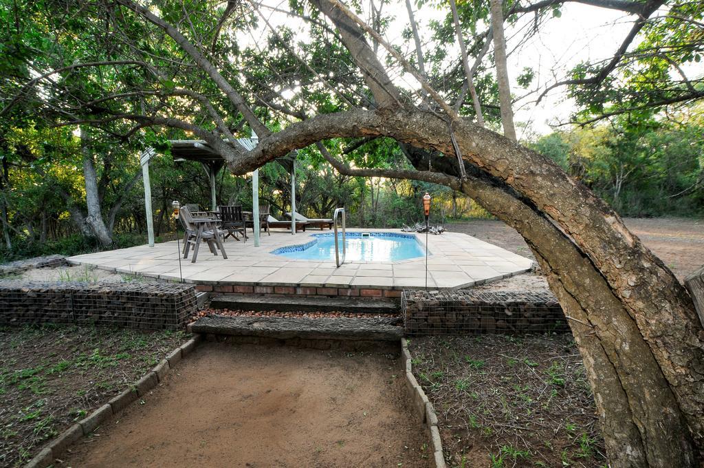 Agence locale pour Circuits, safaris et destinations en Afrique. Nous répondons à votre budget et vos besoins. Safaris en famille et visites guidées6.jpg