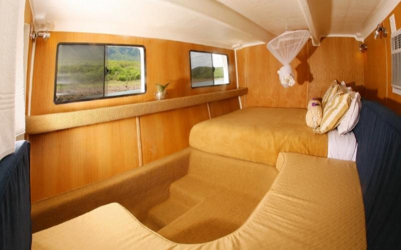 Agence_de_voyage_afrique_Cap_Ou_Pas_Cap_Afrique_du_sud_Safari65.jpg