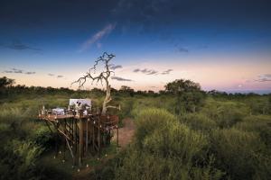 Safari de luxe -