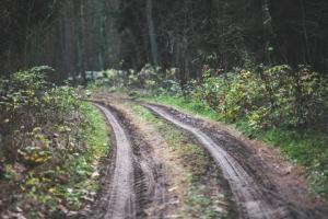 Nos Circuits sur La Route des Jardins -