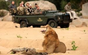 Safaris sur la route des jardin -