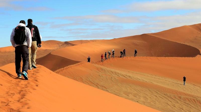 Moringa - C'est le circuit phare, qui inclut toutes les visites classiques, ainsi que quelques « plus ». Le parc national d'Etosha, l'un des plus grands parcs animaliers d'Afrique ; le Damaraland et sa faune sauvage et les majestueuses dunes de Sossusvlei. Ce circuit est modifiable est ajustable.12 jours / 11 nuits