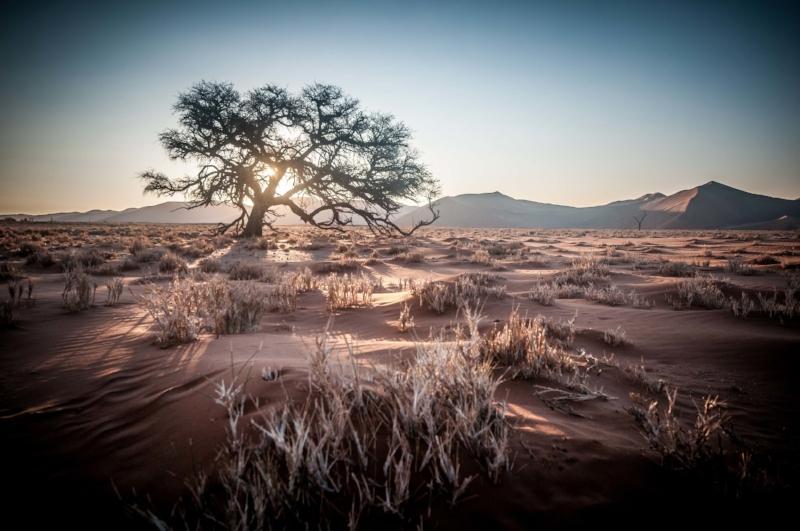 Khurub - Un circuit classique, qui part à la découverte des principaux centres d'intérêt du pays, incluant le désert du Kalahari. Il permet également la découverte de deux des cultures ancestrales namibiennes, grâce à la visite d'un village Himba et une marche avec un guide Bushman.10 jours / 9 nuits