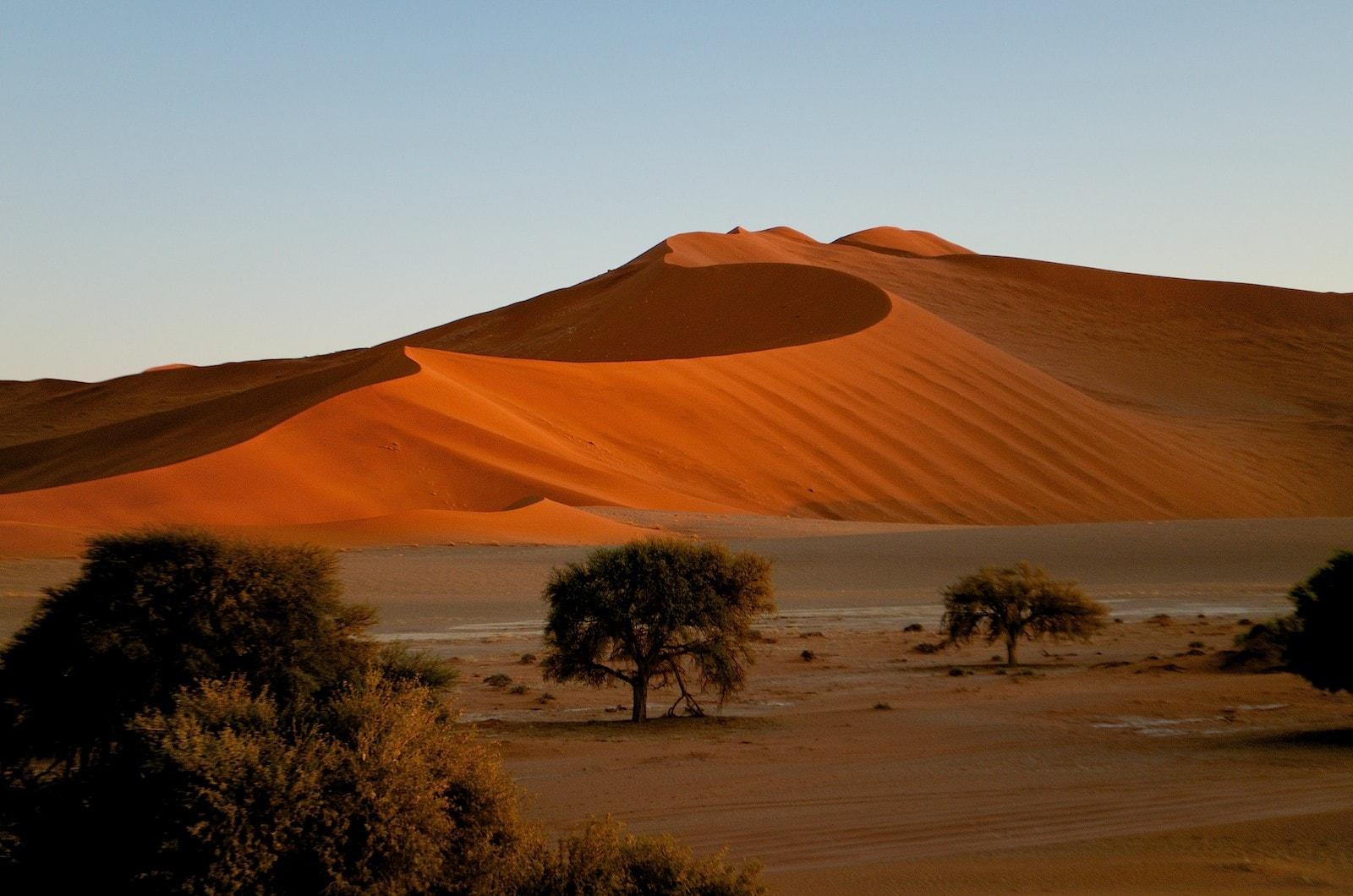 Le meilleur de la Namibie - - 12 jours / 11 nuitsLa Namibie c'est le rêve pour les aventuriers qui aiment les grands escpaces. Des grands marais salants du parc national d'Etosha aux naufrages mystérieux de la côte des squelettes; des dunes de sable dorées de Sossusvlei à la ville portuaire de Swakopmund.