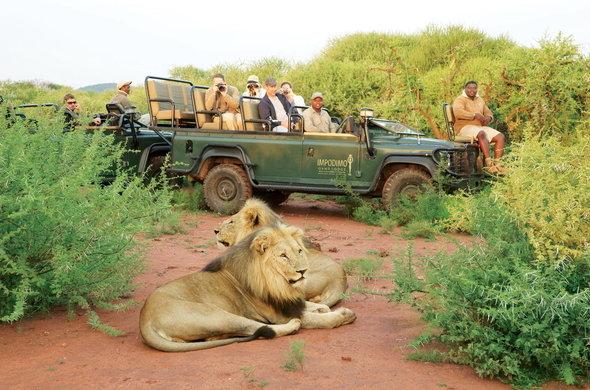 Safari Pilanesburg