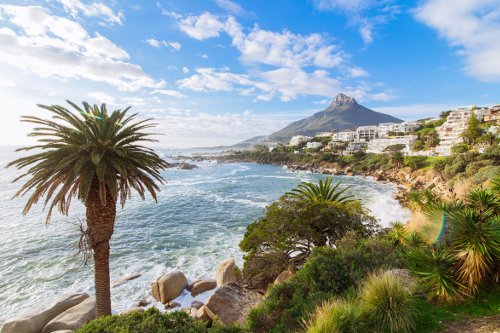 a1 Neighbourhoods - Clifton and Camps Bay - Camps-Bay-Landscape-Lions-Head-Palm-Tree-Ocean.jpg.jpg