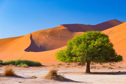 Destinations en Namibie -