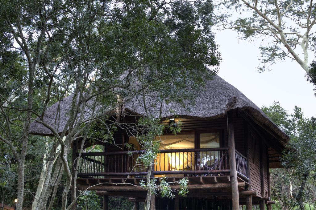 Agence de voyages basée en Afrique. Circuits et Safaris en Afrique. Loges pour les familles et les couples. Hluhluwe_Tree Lodge5.jpg