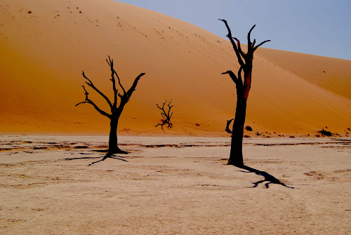 Circuit Le Meilleur de la Namibie