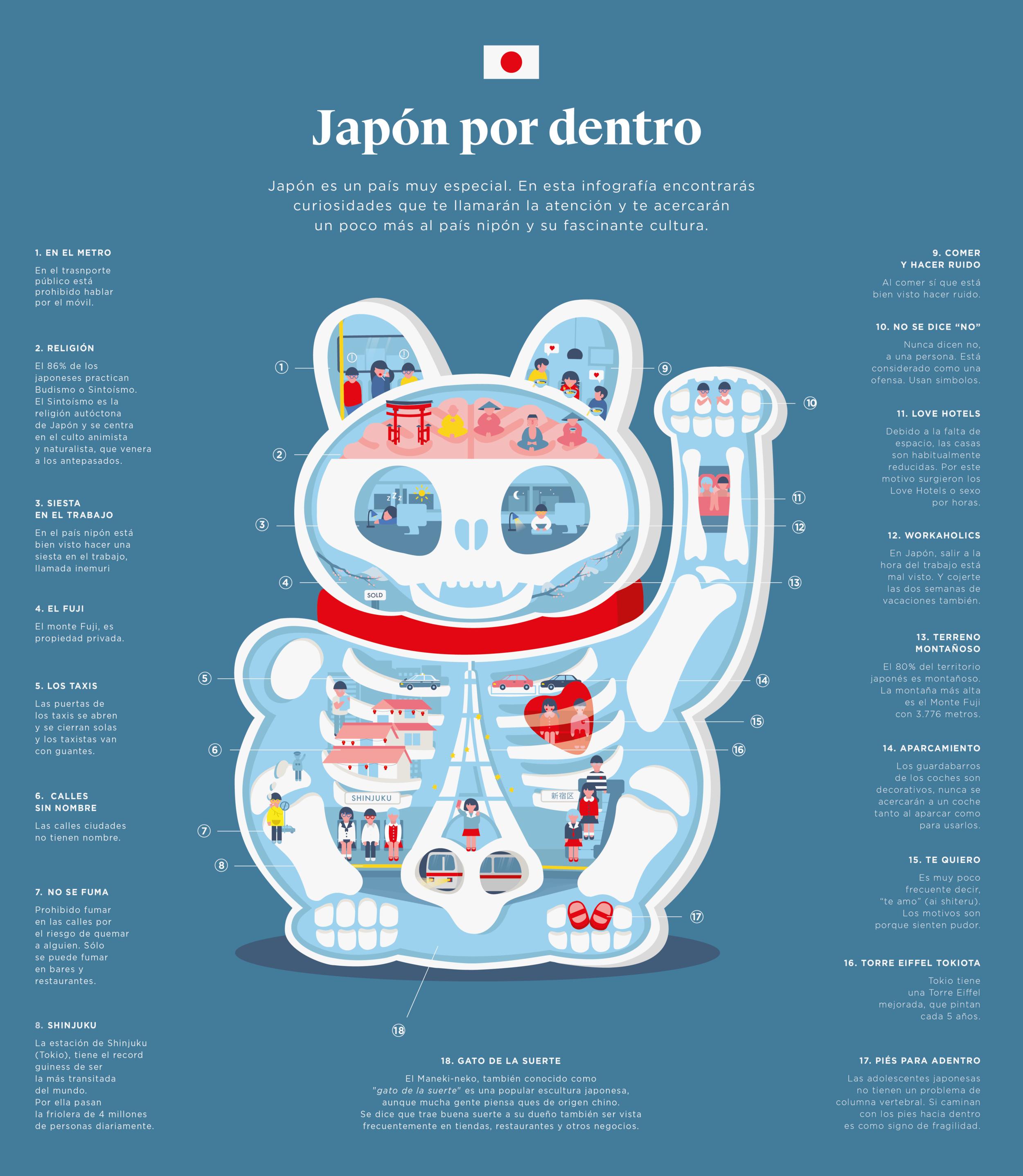 infografia_gatojapo_Mesa de trabajo 1 copia 3.png