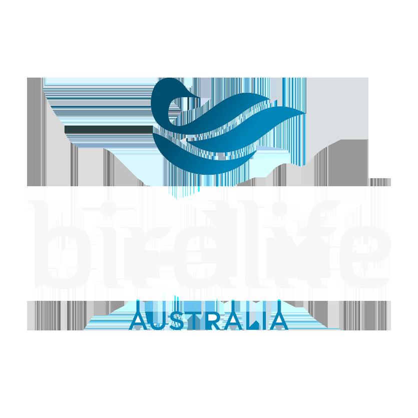 birdlife1.png