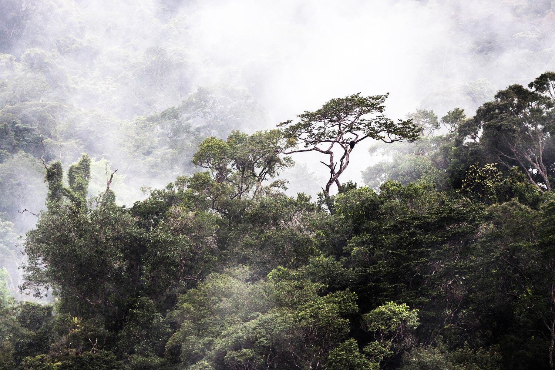 South_America9-2.jpg