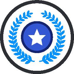 award-winning-icon.png