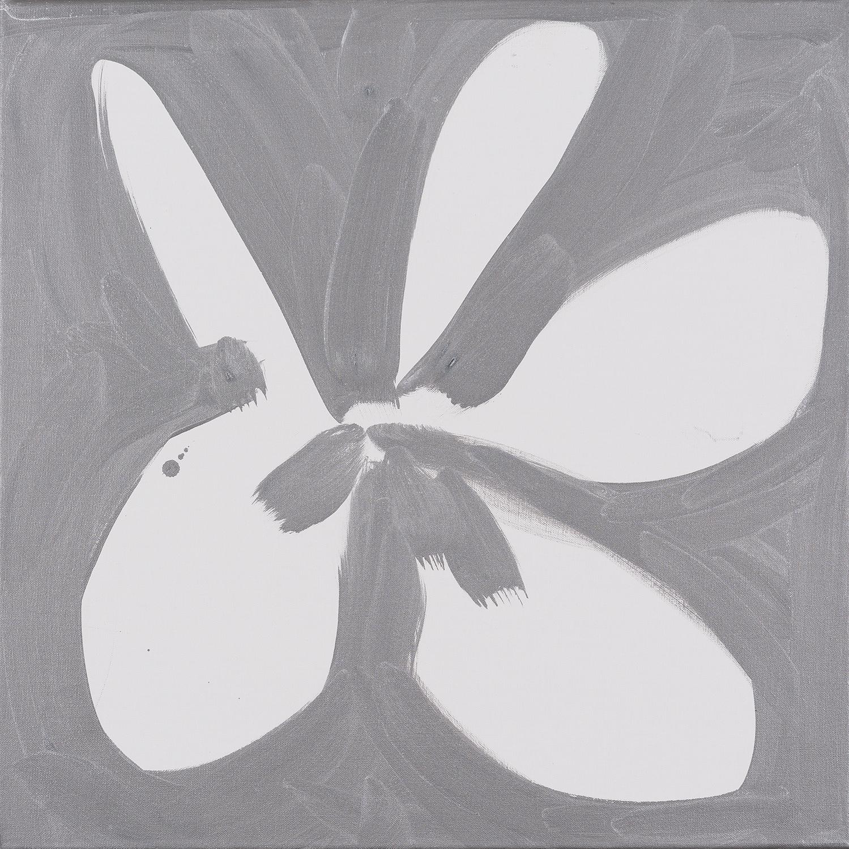 flower, white, silver, black, 2014