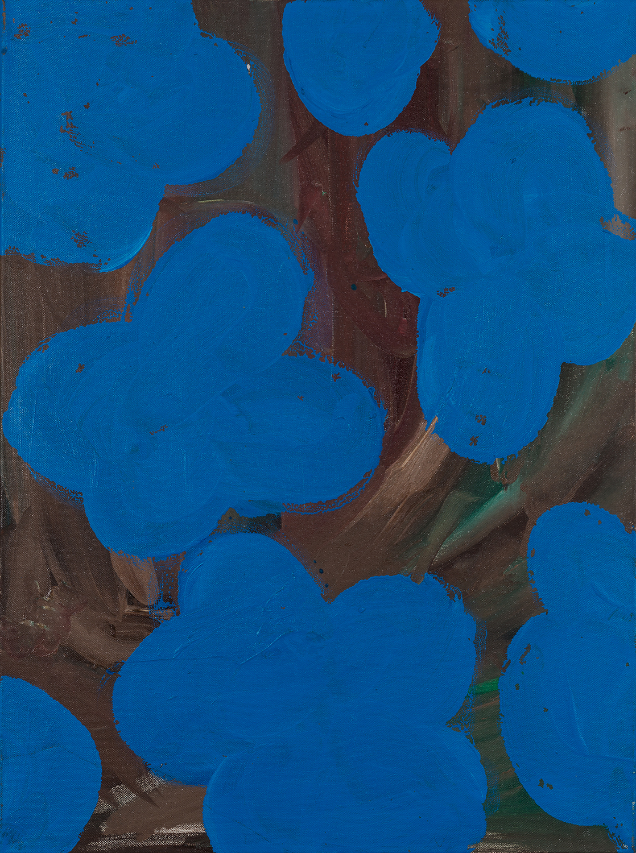flower, blue, 2011