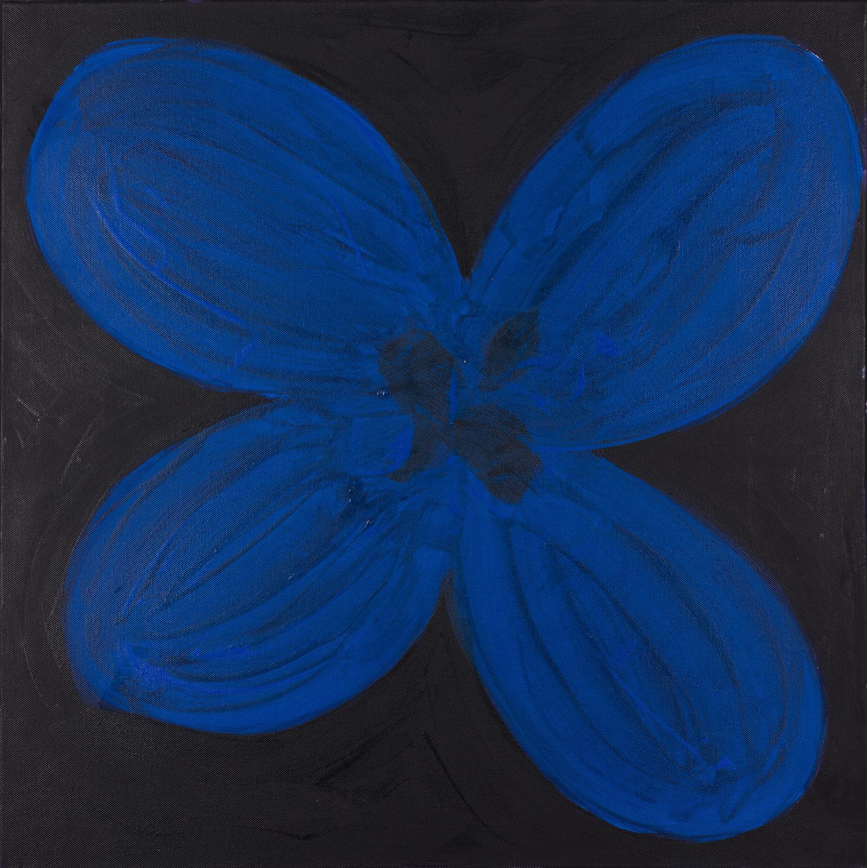 flower, blue, black, 2014