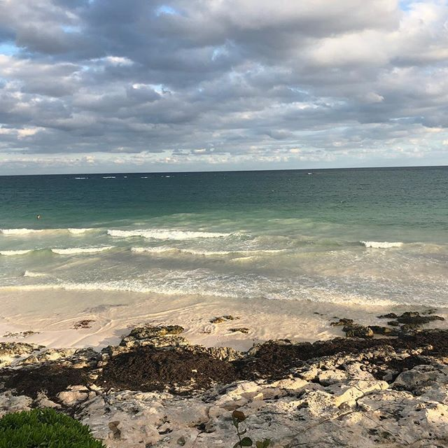 Beautiful views for dinner. #tulum #vacation #selfcare