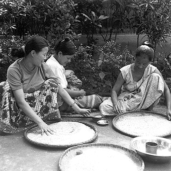 We have to work to prepare the rice we are given in rations for eating. The rice can be very dirty. It contains germs and small pieces of stone which are harmful to our health. All of these must be taken out before we can eat the rice.    Bhimma / PhotoVoice / LWF