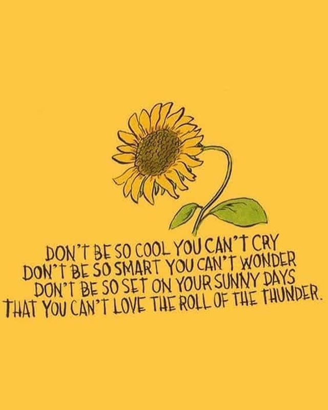 Happy #WisdomWednesday! The Tulip Team Is feeing especially inspired today, as two of our ambassadors just got back from programming with T-Mobile and Ashoka and three more are at the Maine Youth Action Network Conference! We hope this quote reminds you of the importance of balance in your life💛🌷 #TheYellowTulipProject