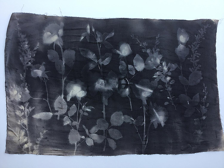 Black Sun Roses