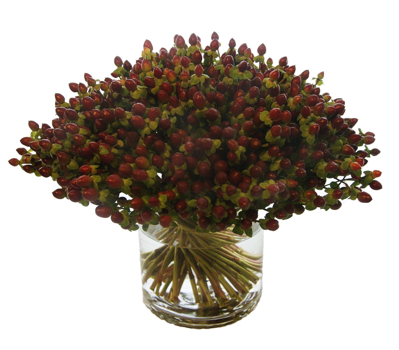 Hybericum Berries